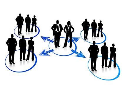 Adaptación, Innovación y Liderazgo